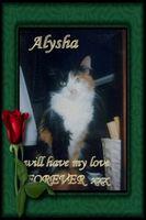 Alysha-lovely1a.jpg